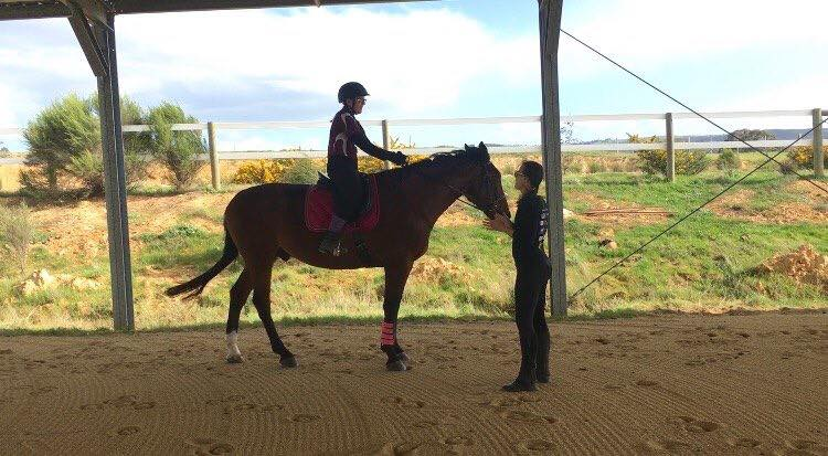 standardbred riding lesson